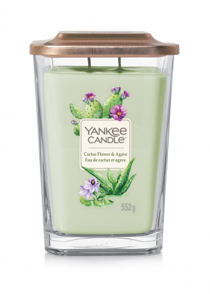 Yankee Candle Cactus Flower & Agave